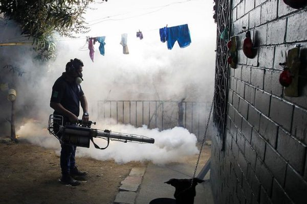 Zika virus: a crisis created by decades of neglect