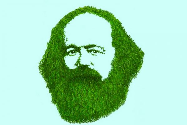 Marx and Engels on ecology: 'Flesh, blood and brain, we belong to nature'
