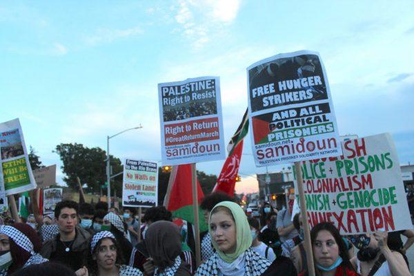 Anti occupation protestors